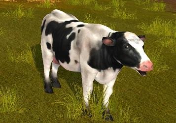 乗れる乳牛.jpg