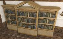 学者の本棚.jpg